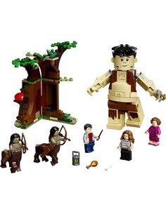 75967 LEGO® HARRY POTTER™ La foresta proibito: Incontro con Usbridge
